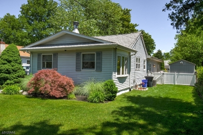 Bridgewater Twp. Single Family Home For Sale: 167 Oak St