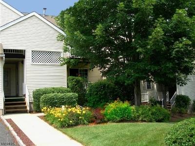 Bernards Twp. Condo/Townhouse For Sale: 332 Potomac Dr