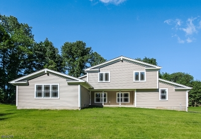 Franklin Twp. Single Family Home For Sale: 408 Cherryville Rd