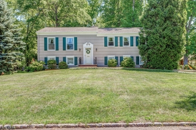 Berkeley Heights Single Family Home For Sale: 81 Tudor Ln