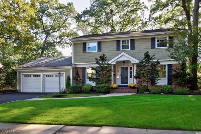 Westfield Town NJ Single Family Home For Sale: $864,000