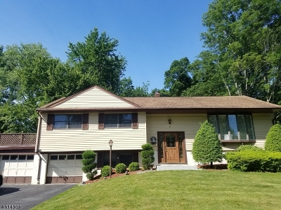 Randolph Twp. NJ Rental For Rent: $3,000