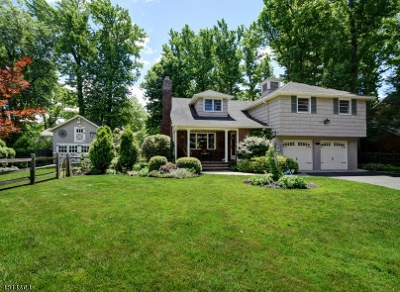 Westfield Town NJ Single Family Home For Sale: $865,000
