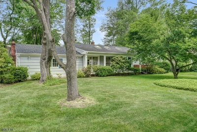 West Caldwell Twp. Single Family Home For Sale: 19 Francine Ave