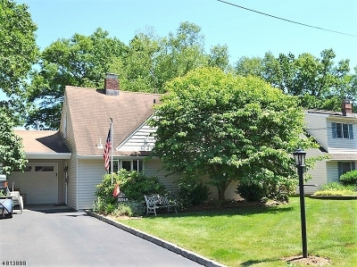 Scotch Plains Twp. Single Family Home For Sale: 2348 Belvedere Dr