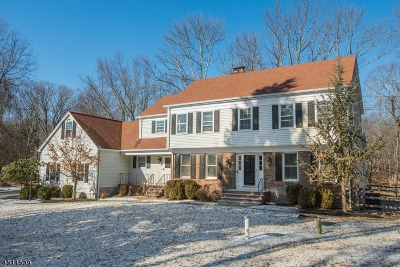 Randolph Twp. NJ Rental For Rent: $3,400