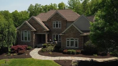 Long Valley Single Family Home For Sale: 52 Reservoir Rd