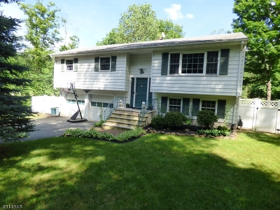 Montville Twp. NJ Single Family Home For Sale: $499,900