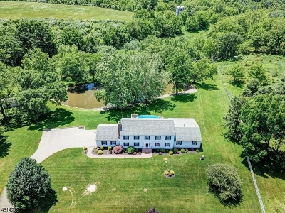 Alexandria Twp. Single Family Home For Sale: 10 Farmhouse Rd