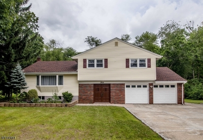 Montville Twp. Single Family Home For Sale: 30 Woodmont Rd