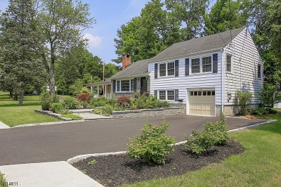 Berkeley Heights Single Family Home For Sale: 360 Park Ave