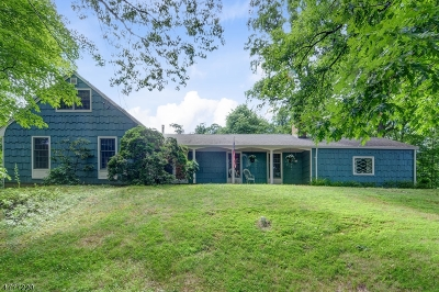 Bridgewater Twp. Single Family Home For Sale: 1966 Mountain Top Rd