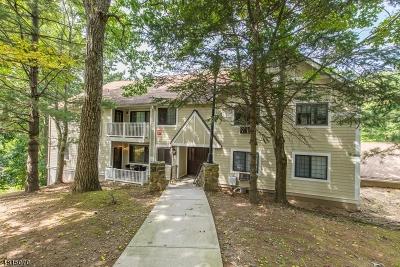 Morris Plains Boro NJ Rental For Rent: $2,400