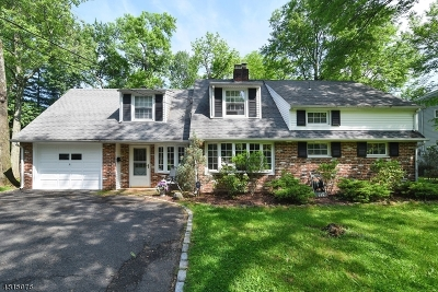 New Providence Single Family Home For Sale: 18 Osborne Ave