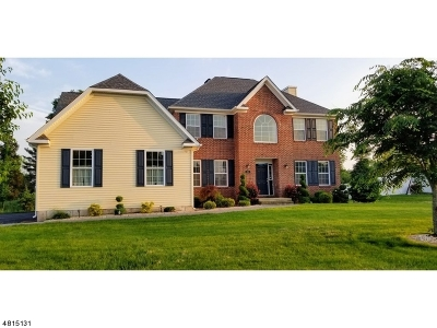 Hillsborough Twp. Single Family Home For Sale: 23 N View Dr