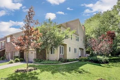 Madison Boro Condo/Townhouse For Sale: 176 Windsor Pl