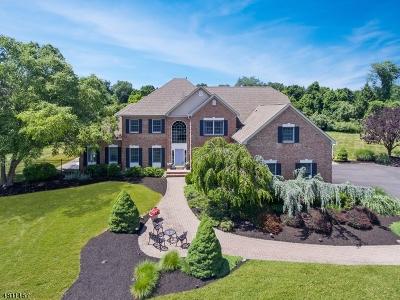 Readington Twp. Single Family Home For Sale: 16 Delaware Road