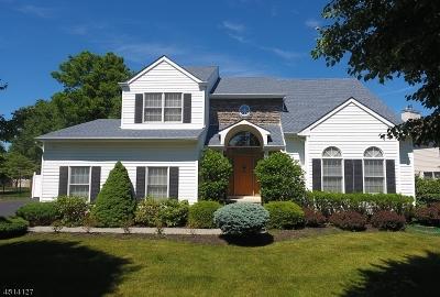 Roxbury Twp. Single Family Home For Sale: 8 Hawthorn Dr