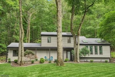 Washington Twp. NJ Single Family Home For Sale: $439,000