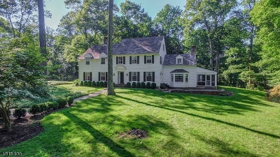 Bernardsville Boro Single Family Home For Sale: 139 Post Kennel Rd