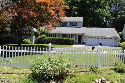 Sparta Twp. Single Family Home For Sale: 27 Sagamore Trl