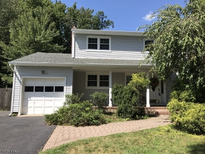 Edison Twp. Single Family Home For Sale: 18 Devon Rd