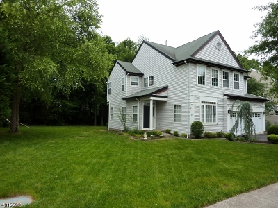 Montgomery Twp. Single Family Home For Sale: 10 Rutgers Ln