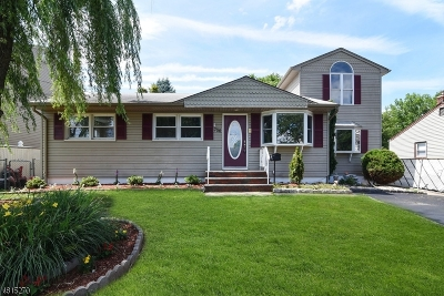 Kenilworth Boro Single Family Home For Sale: 736 Clinton Ave