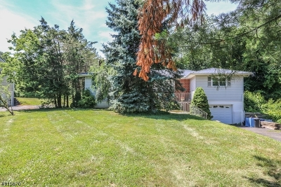 Hillsborough Twp. Single Family Home For Sale: 43 9th St