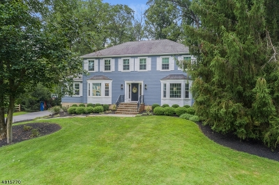 Bernards Twp. Single Family Home For Sale: 35 Berkeley Circle