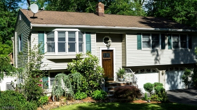 Long Hill Twp Single Family Home For Sale: 197 Northfield Rd