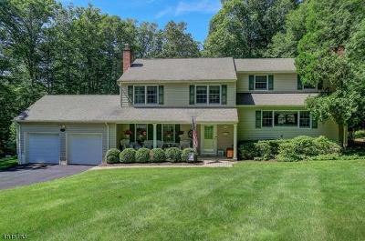 Mendham Boro NJ Single Family Home For Sale: $749,000