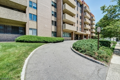 Summit Condo/Townhouse For Sale: 1 Euclid Ave Apt 5-E #5E