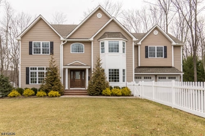 Mendham Boro NJ Single Family Home For Sale: $977,000