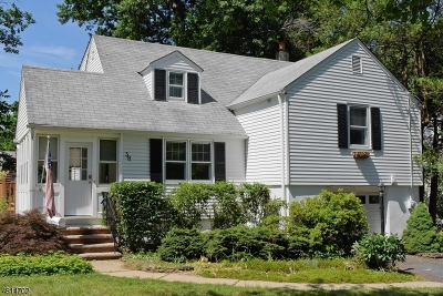 Florham Park Boro Single Family Home For Sale: 38 Beechwood Rd