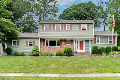 Roxbury Twp. Single Family Home For Sale: 6 Edor Lane