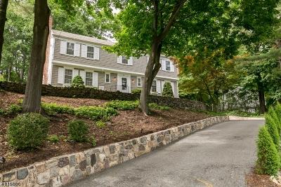 Morris Twp. Single Family Home For Sale: 23 Ellsworth Ave