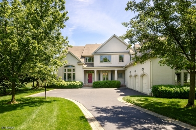 Montgomery Twp. Single Family Home For Sale: 12 Banyan Rd