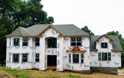 Chatham Twp. Single Family Home For Sale: 20 Mountainside Dr