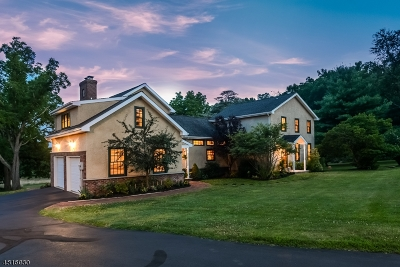 Delaware Twp. Single Family Home For Sale: 70 Sandy Ridge Rd