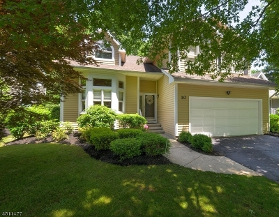 Bedminster Twp. Single Family Home For Sale: 10 Smoke Rise Ln