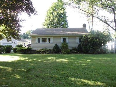Morris County Single Family Home For Sale: 3 Navajo Trl