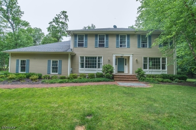 Morris County Single Family Home For Sale: 144 Meriden Rd
