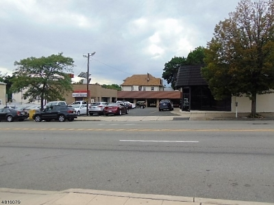 Belleville Twp. Commercial For Sale: 45-53 Washington Ave