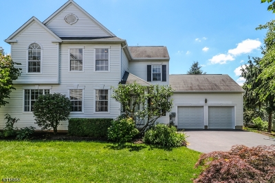 Bernards Twp. Single Family Home For Sale: 51 Liberty Ridge Rd
