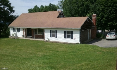 Sussex County Single Family Home For Sale: 9 Lk Pochung Rd