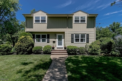Berkeley Heights Single Family Home For Sale: 6 Chestnut Hill Dr