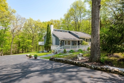 Sussex County Single Family Home For Sale: 14 Newton Ave