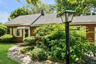 Morris County Single Family Home For Sale: 74 Village Rd