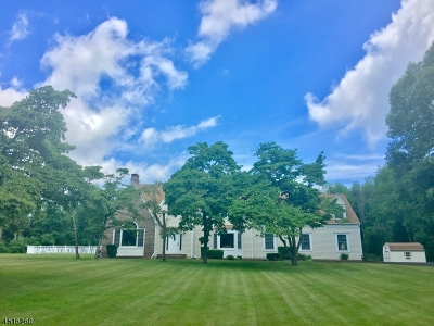 Readington Twp. Single Family Home For Sale: 460 460 Nj-31